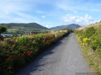 11 Ring of Kerry, Valentia, Mick & Lucy (114)