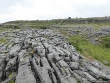 16 The Burren, Kinvarra & Bunratty overnight (28)
