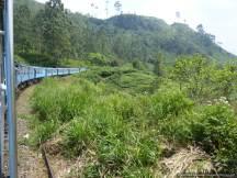 F Train from Ella to Hatton (45)
