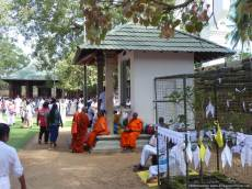 K Anuradhapura (254)