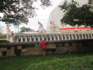 K Anuradhapura (338)