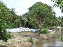 K Anuradhapura (376)