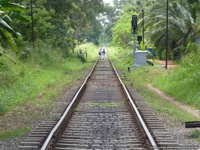 K Anuradhapura (379)