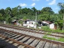 L Anuradhapura to Colombo (9)