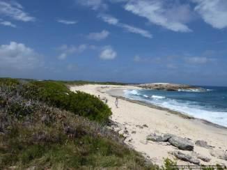 5 Guadeloupe Grande Terre (168)