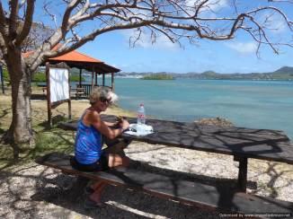 7 Martinique (178)