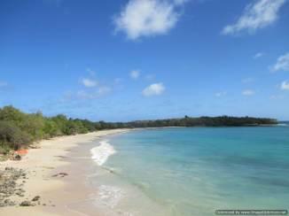 7 Martinique (208)