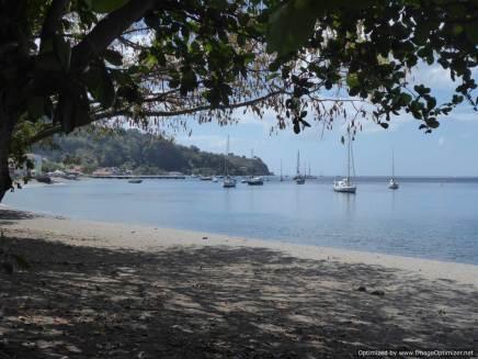 7 Martinique (79)